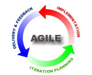 Agility and User Feedback