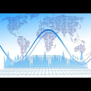 Data Audit